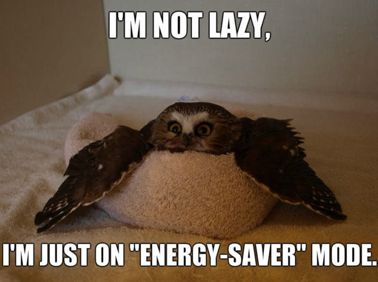 "meme; image is owl lying on pillow, text says ""I'm not lazy, I'm just on energy saver mode"""